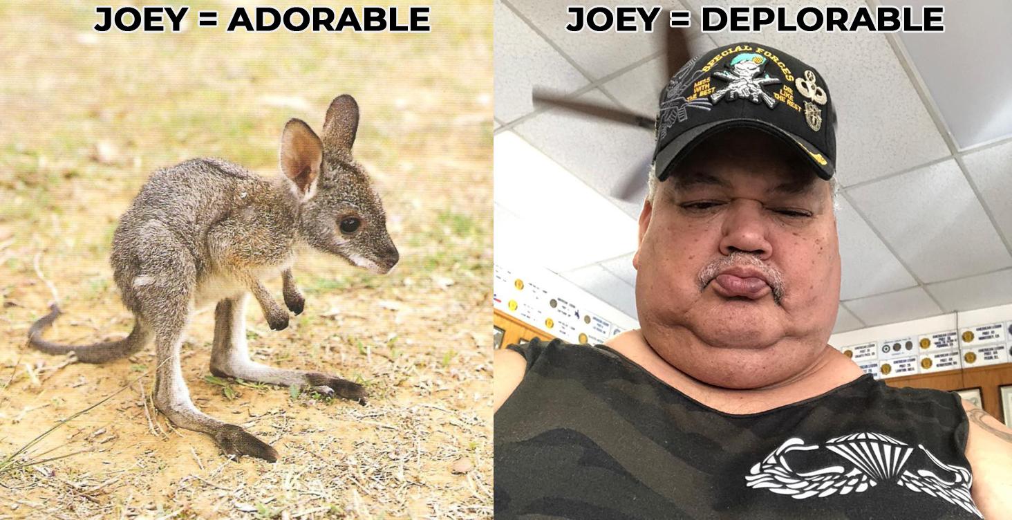 Joey Compare